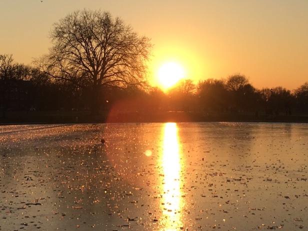 Icy pond, Clapham Common, London