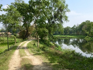 A lane in Majuli, Assam, India, heyloons