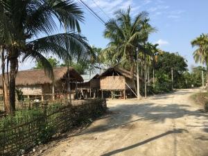 A Missing village hut in Majuli